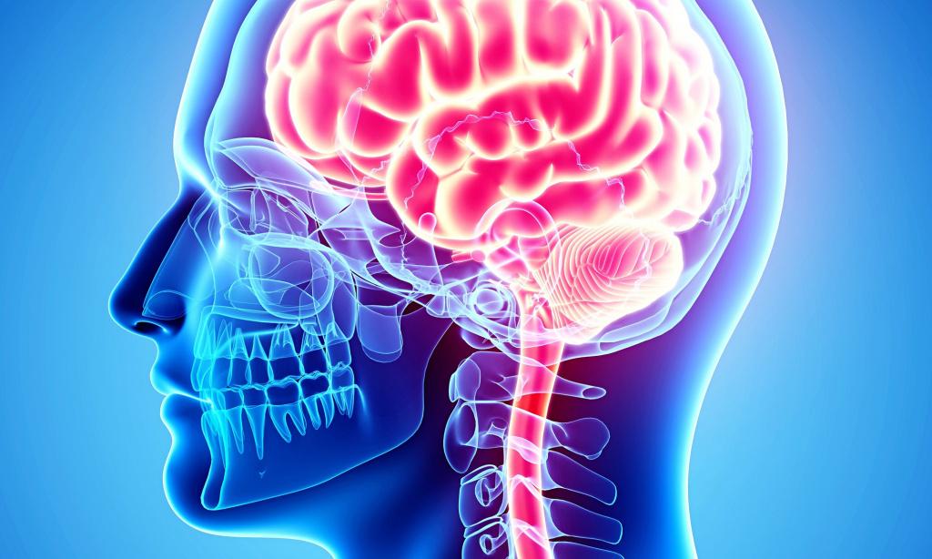 Как улучшить и надолго сохранить мозговое кровообращение